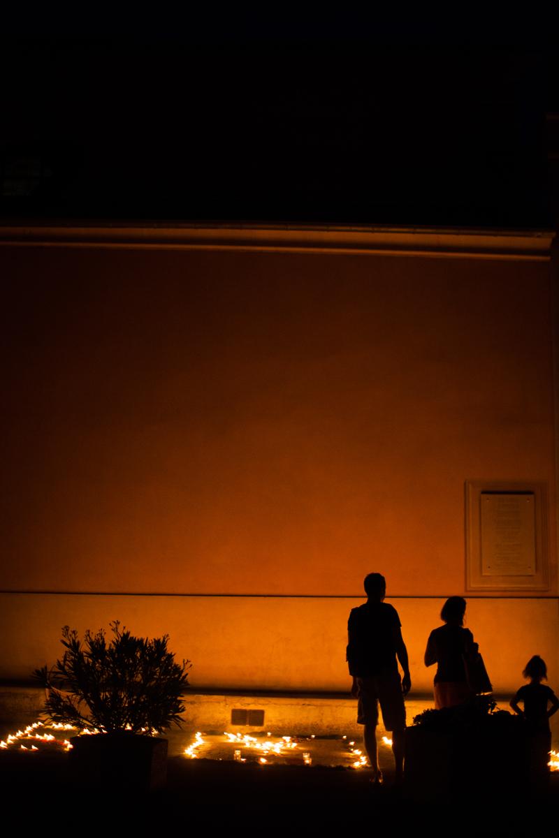 Limaces2015©C. Alfonsi (12)