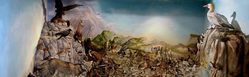 Panorama diorama de France