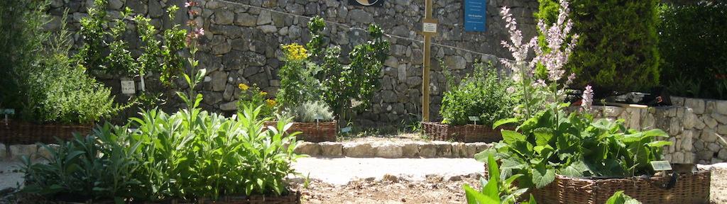 Jardin Long