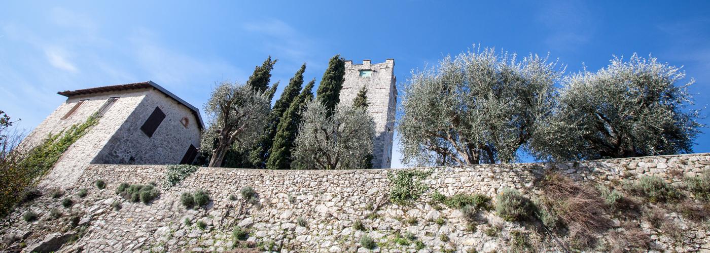 2- chateau©c-alfonsi