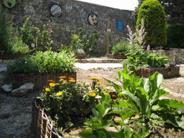 jardin-médiéval-1W