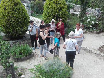 Visite Jardin Medieval (2)