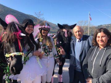 Carnaval Defile Equestre©V Mantz (20)