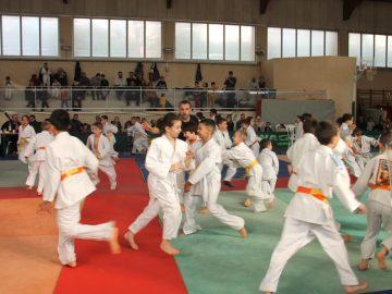 Tournoi Judo 2020 (26)