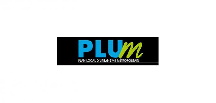 Plum Image 696x333